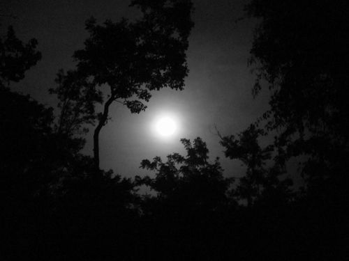 Moon resized