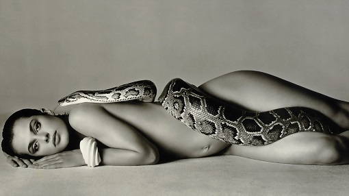 Girl-with-Snakes-wallpapers-Pictures